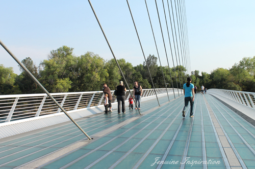 Walking on the Sundial Bridge